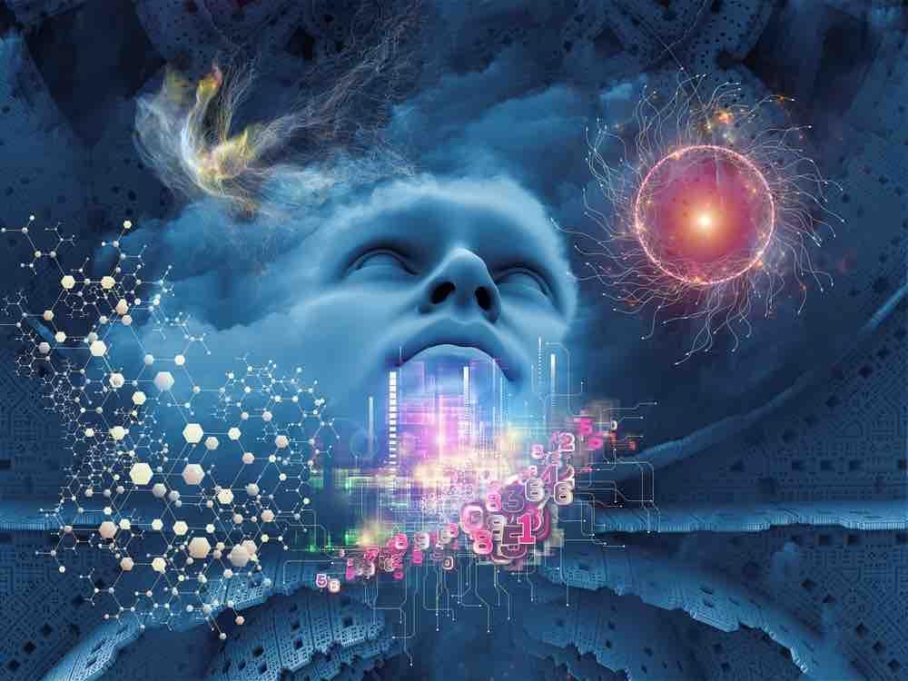 évolution conscience