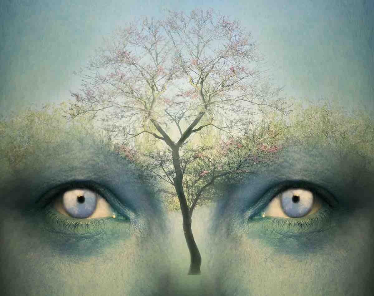 Méditation du troisième œil