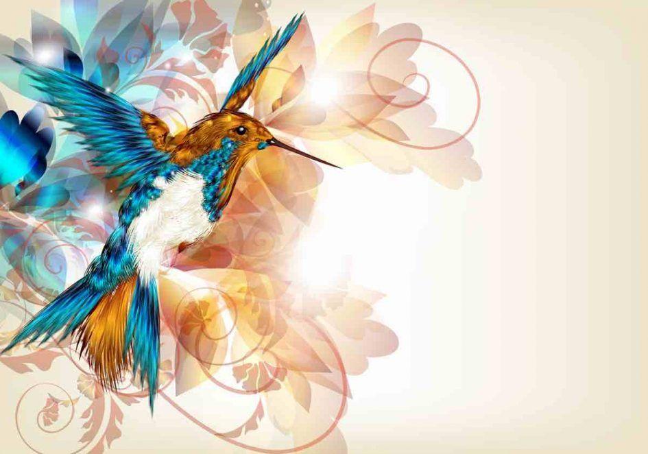 Parabole du colibri