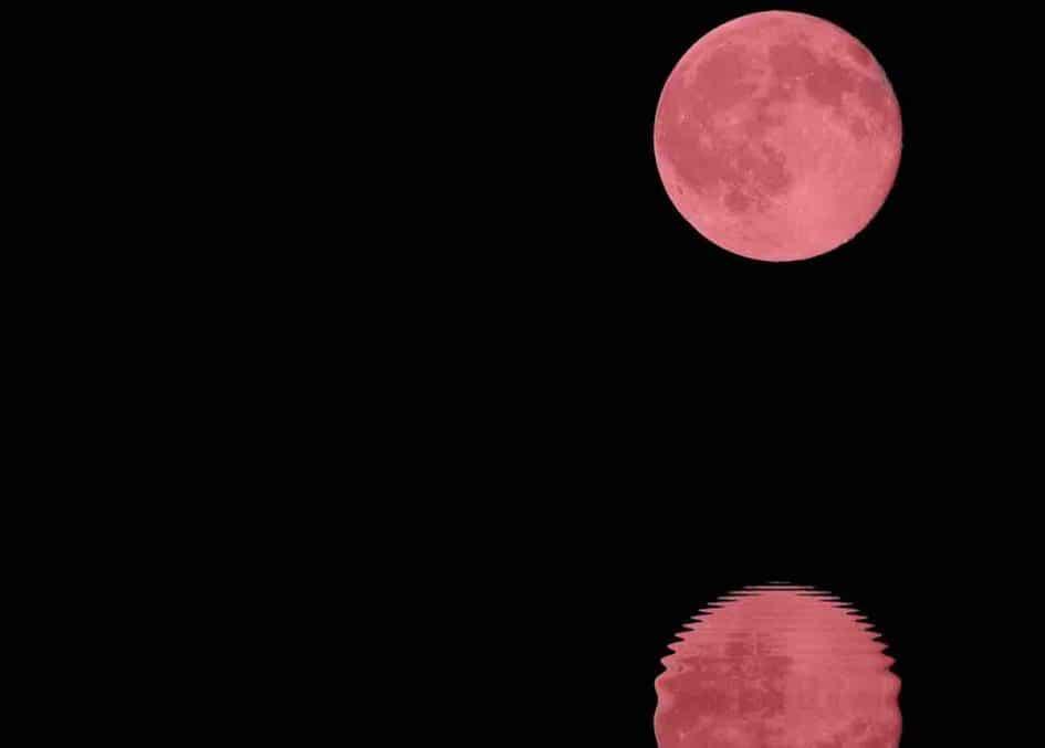 lune rose d'avril 2020