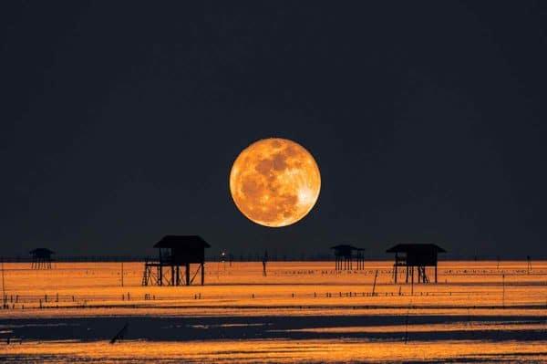 horoscope de l'éclipse lunaire de juillet 2020