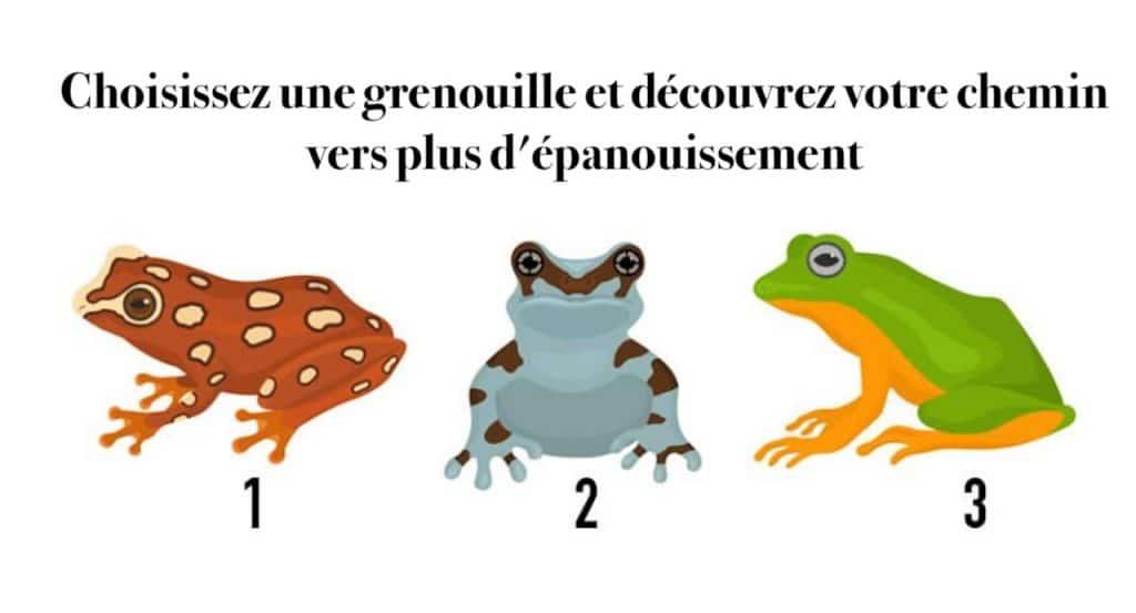Choisissez une grenouille