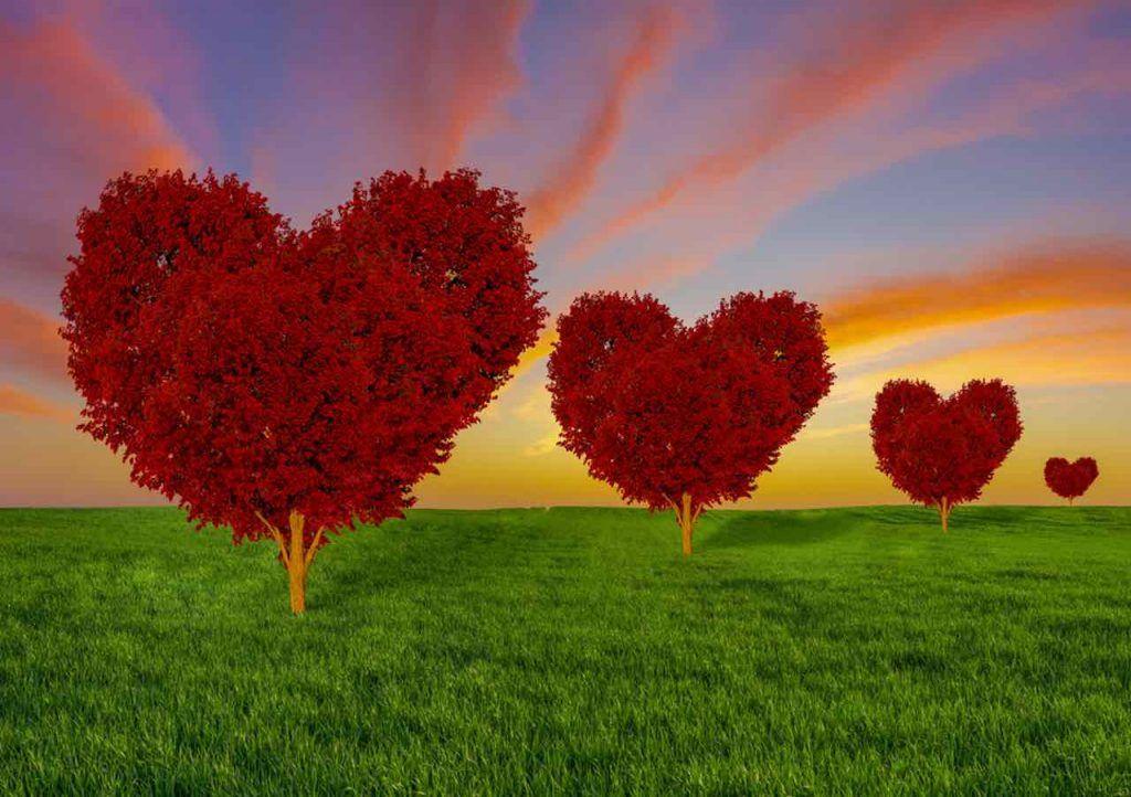 penser avec votre cœur