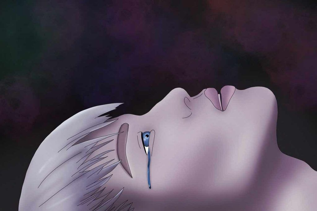 fondre en larmes