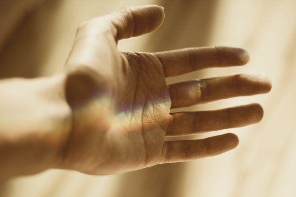 lignes de la main